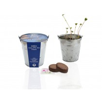 Kit de semis - pot zinc 10 cm