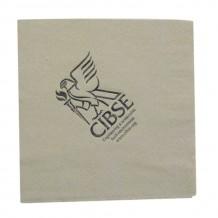 Serviette papier 33 x 33 cm - 2 plis